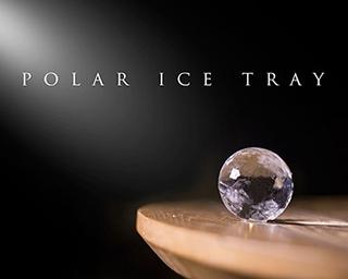 Polar ice tray1 0a62ea1c934e0669568fbe60594b572001bdea598d75aaf5d9f97de509c506a5